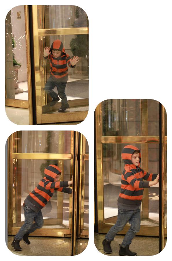 Buddy door