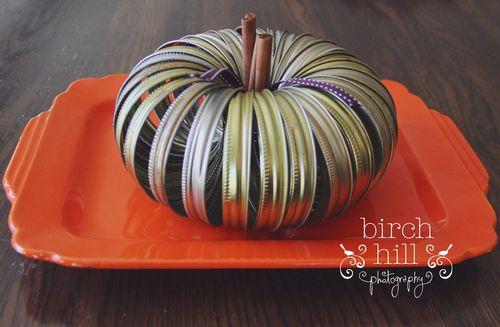 Pumpkin for web